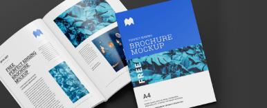 img_brochure-temp